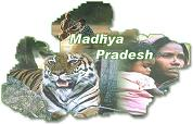 Madhya Pradesh government jobs