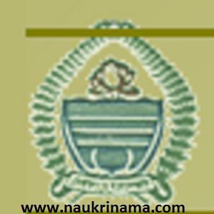 333 Junior Grade Nurse , Senior Grade Nurse & Various Vacancy - JKSSB